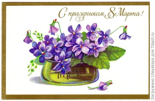 Фиалки на поздравительной открытке