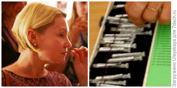Моделинг аромата сантолины, фото автора. Эфирные  масла для моделинга. Фото автора