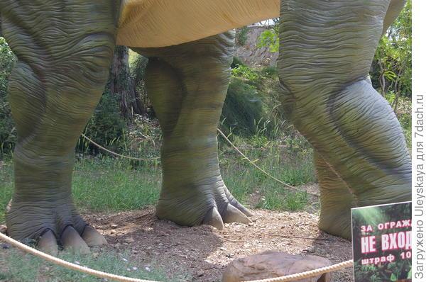 Апатозавр по частям, его лапы