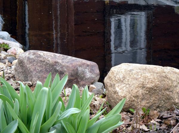 Камни у пруда