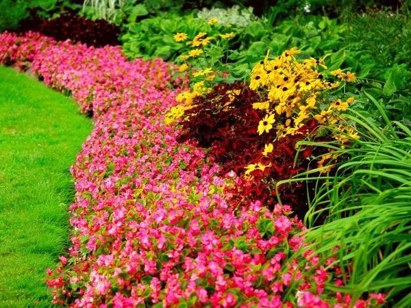 Цветочный бордюр