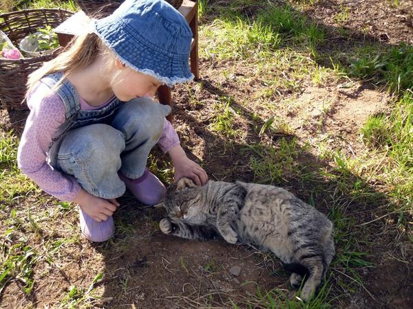 Аленка гладит кота