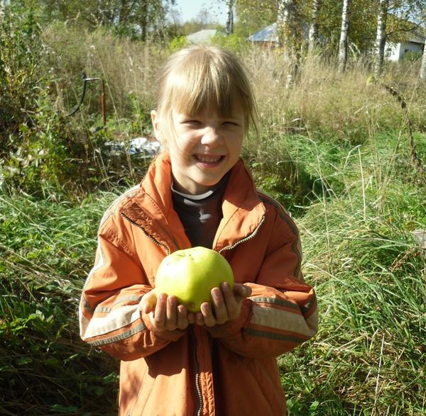 Аленка с яблоком