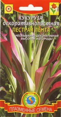 Кукуруза декоративная семена