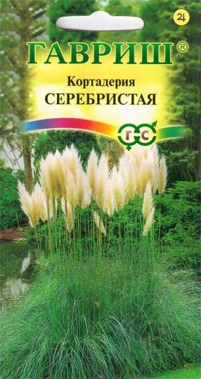 Упаковка семян кортадерии