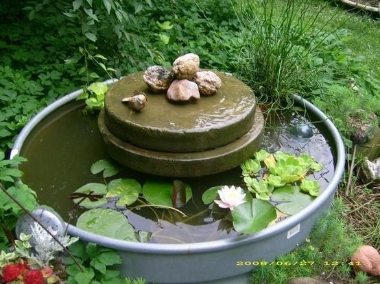 Миниатюрный водоем из старой бочки