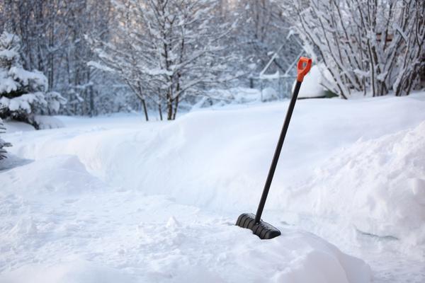 Зимние работы в саду
