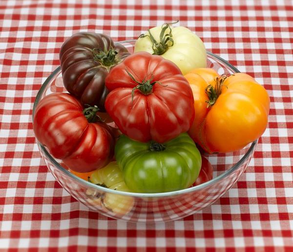Плоды томатов - сорта разных цветов