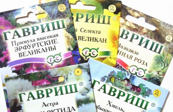 """Компания """"ГАВРИШ"""" - один из лидеров рынка семян"""