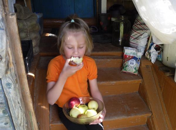 Как не попробовать спелого яблочка!