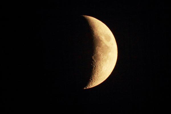 Растущая Луна активизирует жизнедеятельность надземных частей растений