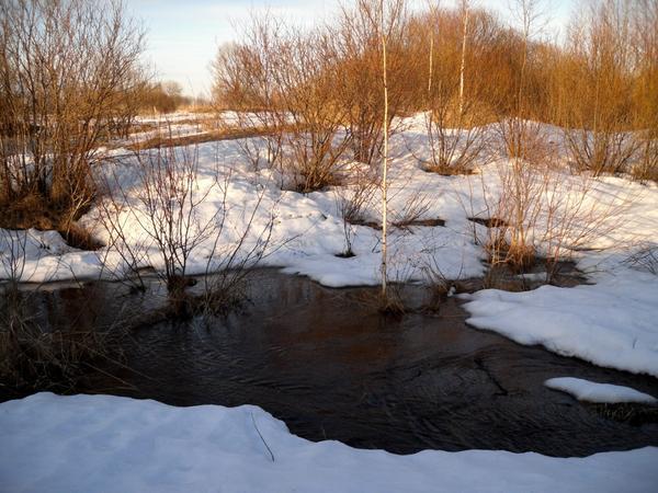 """""""Уж тает снег, бегут ручьи..."""""""