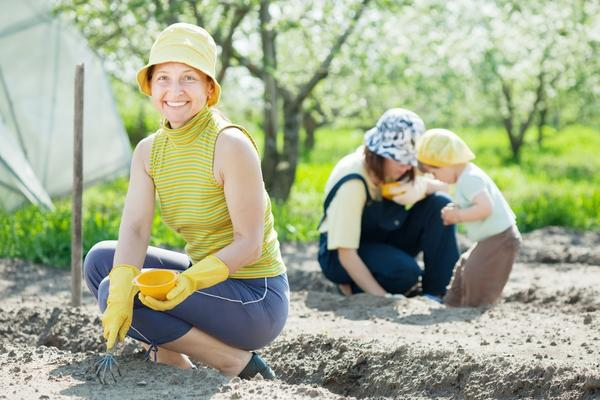 Сезонные работы в саду и огороде: третья неделя мая