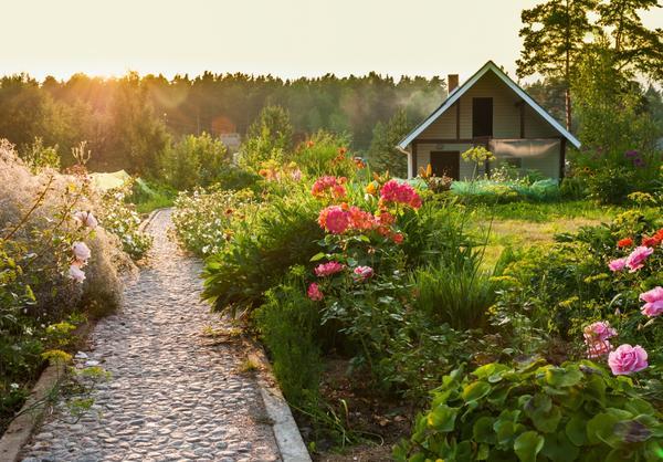 Красивый сад требует заботы