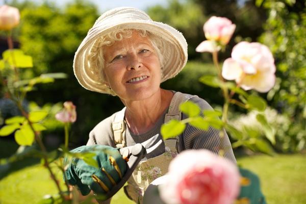 Начало июля - радует и сад, и цветники
