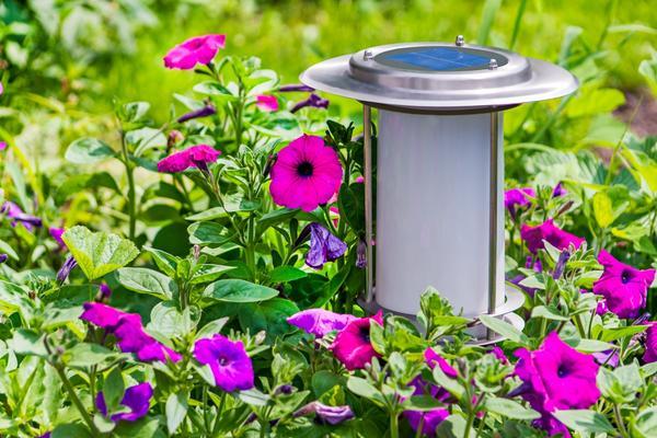 Фонари на солнечных батареях удобны для декоративного освещения сада