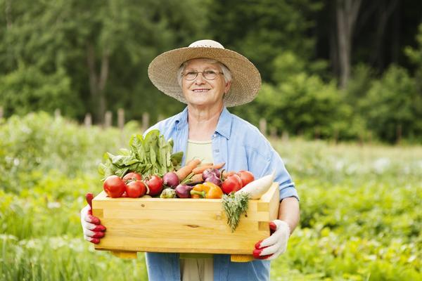 Продолжаем регулярно убирать созревающие плоды