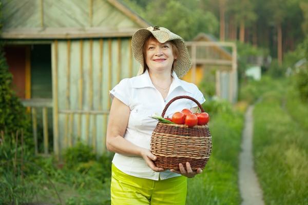 Август награждает за труды урожаем