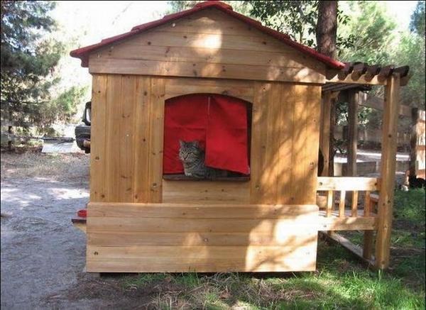 Большой деревянный дом, фото с сайта http://4.bp.blogspot.com