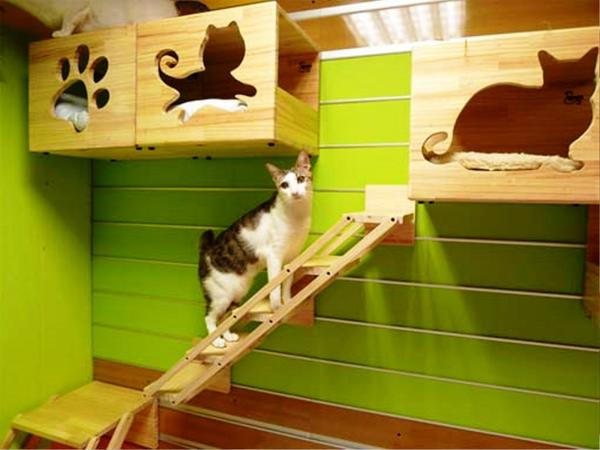 Кошачьи полочки, фото с сайта realhousedesign.com