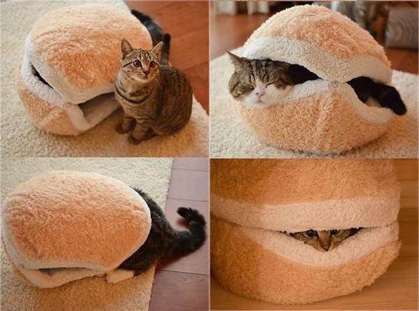 Домик-гамбургер, фото с сайта http://thepariscat.files.wordpress.com