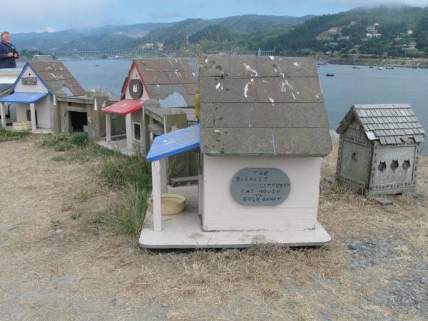 Орегон, кошачье поселение, фото с сайта http://www.city-data.com