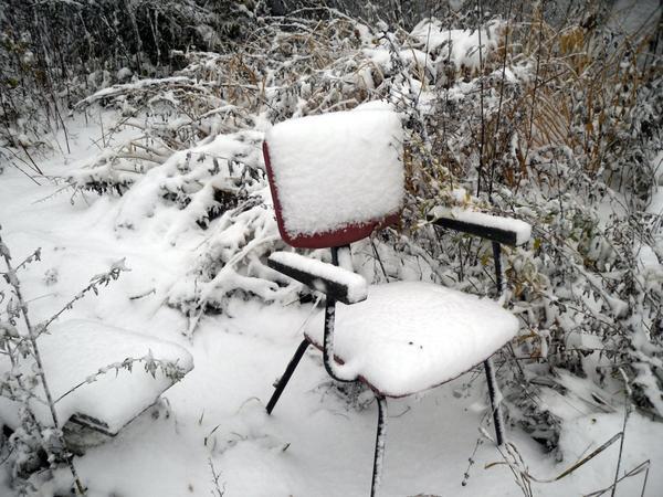 Под снегом даже заброшенный уголок сада выглядит романтичным