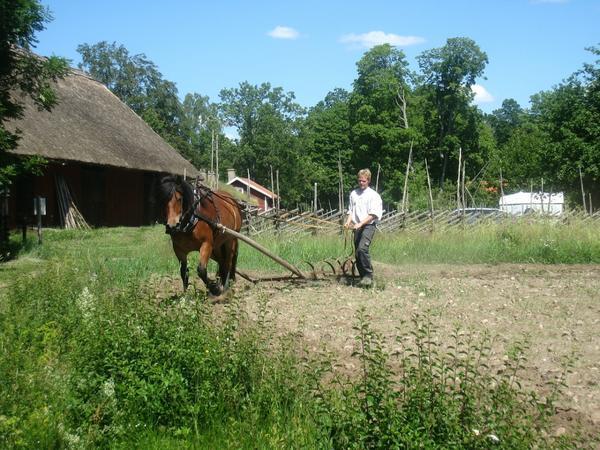 Возможно, мы до сих пор пахали бы на лошадях, если бы все боялись нарушить правила