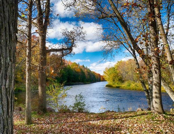 Жизнь изменчива: течет вода, сменяют друг друга времена года
