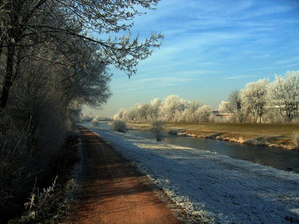Морозы без снега опасны для почвенных жителей