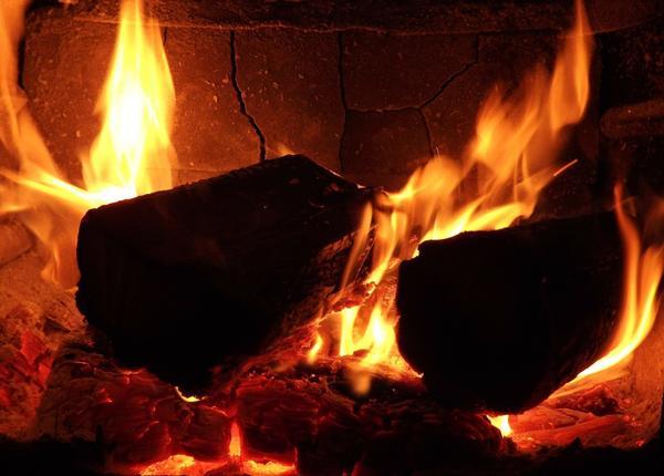 У разных пород древесины разная теплотворная способность