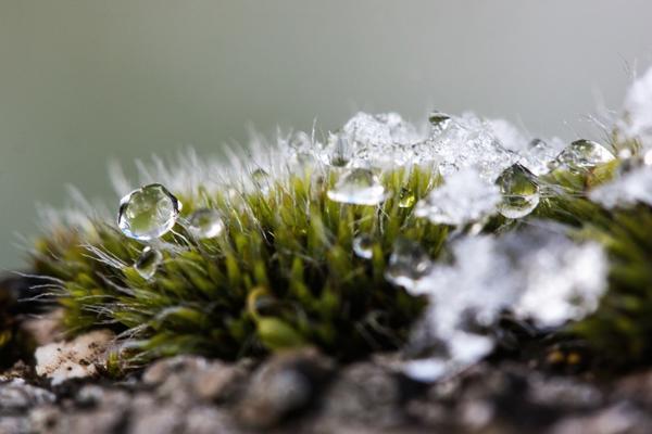 """Снег может растаять, когда открываются """"февральские окна"""""""