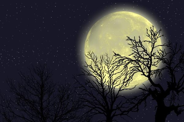 Лунный календарь - не мистика, а наука