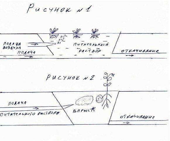 схема гидропоники
