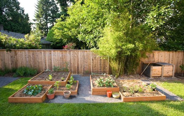 Современный огород - не только источник овощей, но и элемент дизайна участка