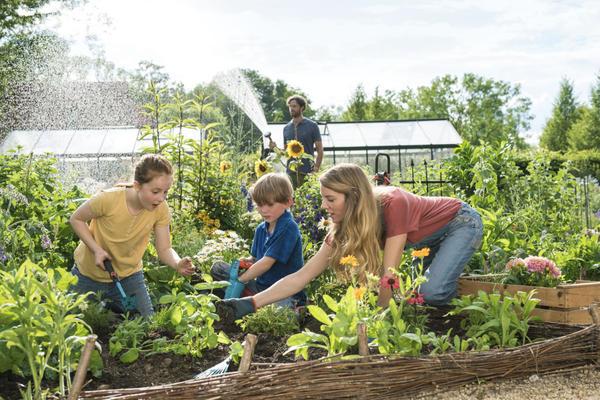 Изменить участок в соответствии с современными тенденциями садового дизайна по силам каждому