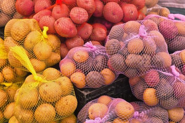 Лучше сажать картофель разных сортов - с разными сроками созревания