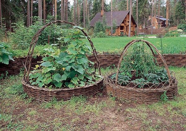 Круглые грядки-корзины. Фото с сайта dljadachnikov.ru
