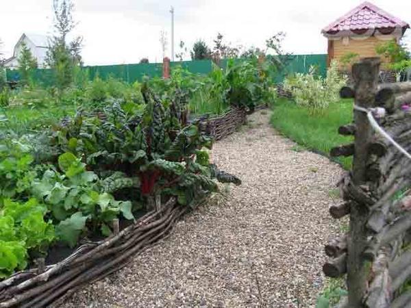 Грядка-миксбордер. Фото с сайта 101dizain.com.ua