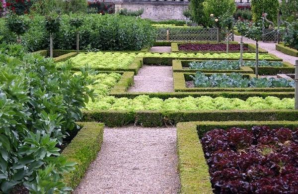 Декоративный огород в Виландри. Фото с сайта dvalepestka.ru