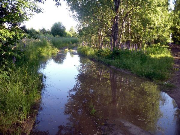Думаете, это река? Нет, это дорога...