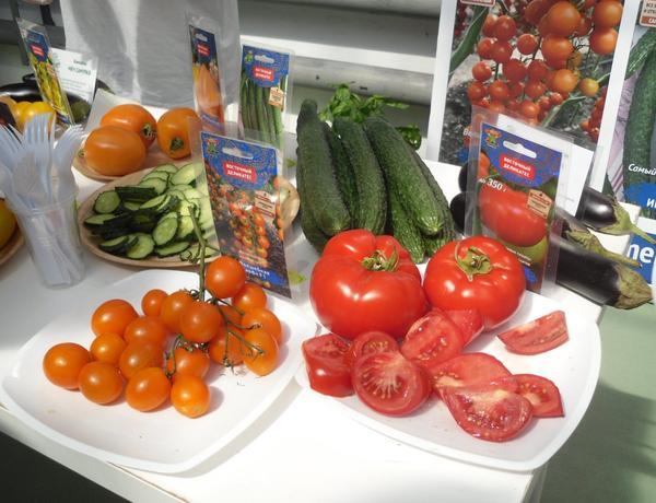 Дегустация овощей