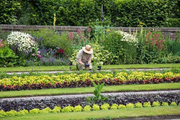 Подходы к садоводству и дачной жизни меняются