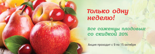 Саженцы плодовых со скидкой от интернет-магазина Все сорта