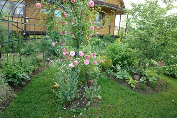 И в низине можно разбить красивый сад