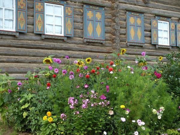 Какие растения создают русский сад?