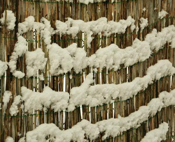 Для защиты растений от наледи, ветра, солнечных ожогов применяют циновки