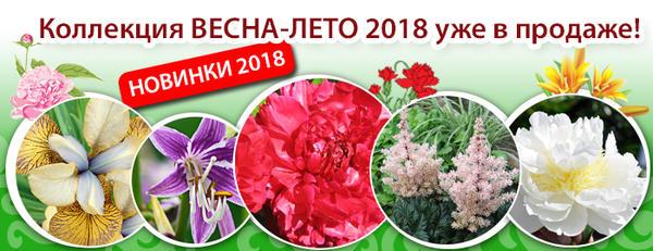 Коллекция Весна-лето 2018 от Русского Огорода