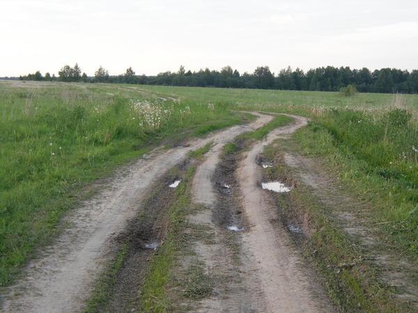 Дорога может быть такой