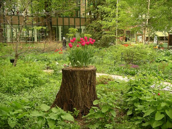 Для наполнения контейнера обычная садовая почва не подойдет